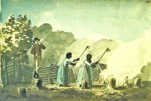 Cultivating Tobacco 1797, Benjamin Henry Latrobe Sketchbook III, 33, Maryland Historical Society